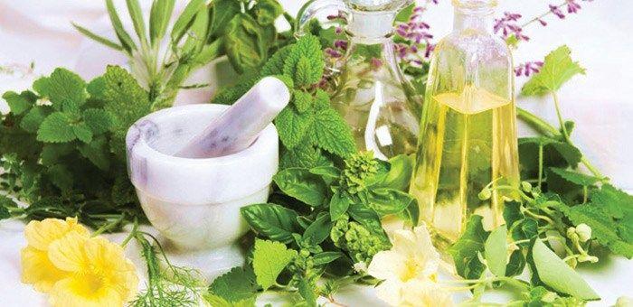Φυτά που μας Θεραπεύουν