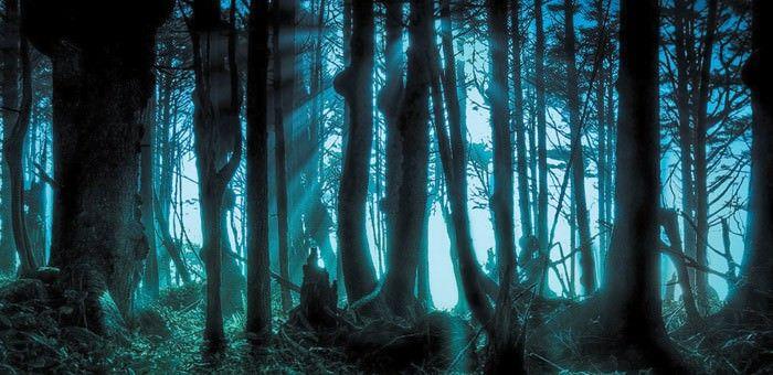 Μεταθανάτια ζωή: Το ταξίδι της ψυχής μετά τον θάνατο