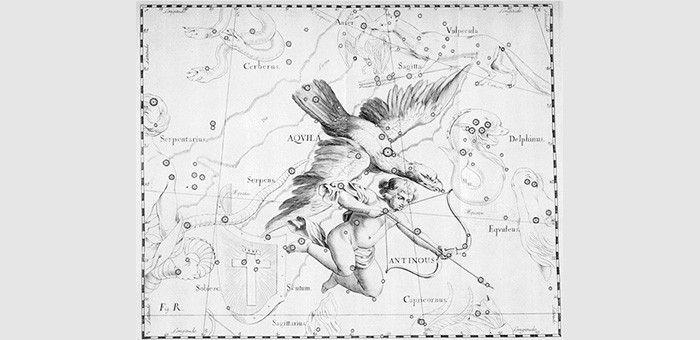 Λύρα, Αετός και Αντίνοος