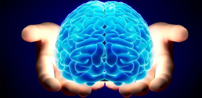 Πόσους Εγκεφάλους Έχετε;